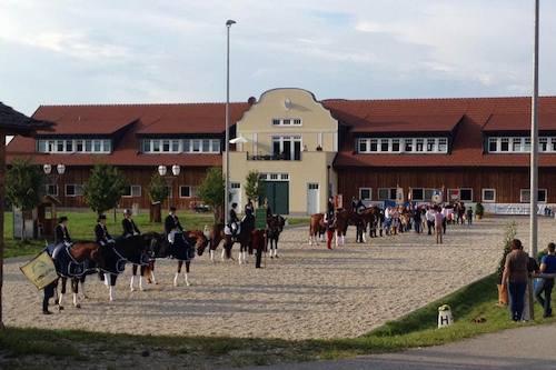 OÖ Mannschafts-Meisterschaften Dressur 2016 in Wels